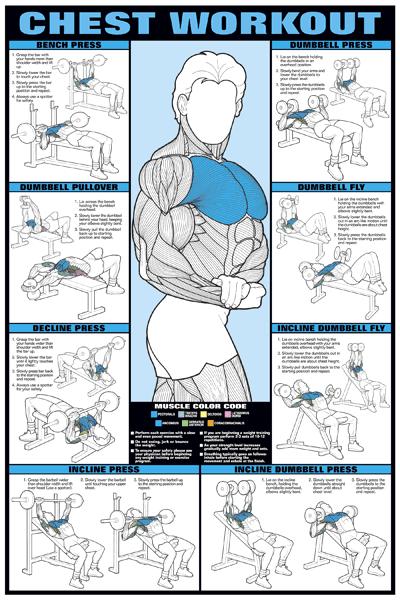 Estos son los ejercicios que puedes incluir en tu rutina de pecho, ¿los haces todos? http://t.co/9JAnkoPAQD