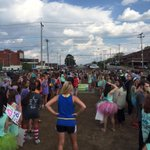 We had an absolute blast at the @UTCDeltaZeta #UTCTurtleTug15! Its time to start preparing for next year. http://t.co/Nuv8jLlEet
