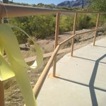 A single ribbon tied to the railing is separated from the rest of the memorial. Pardos body found 6 days ago #tucson http://t.co/b0IDoTZMnl