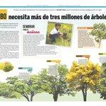 """#MundoMCBO - Vía @ AlferRioVerde: RT fundacionazul: """"#Maracaibo necesita más de #TresMillonesDeÁrboles"""" vía Versio… http://t.co/TwbwXrN6t9"""