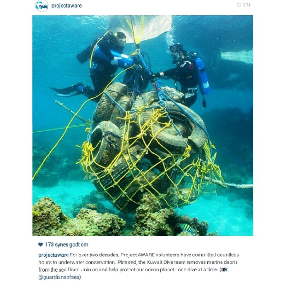 Project AWARE volunteers have committed countless hours to underwater conservation. #dailygoodnews #dkpol #dkgreen http://t.co/NCUI7P4dYc