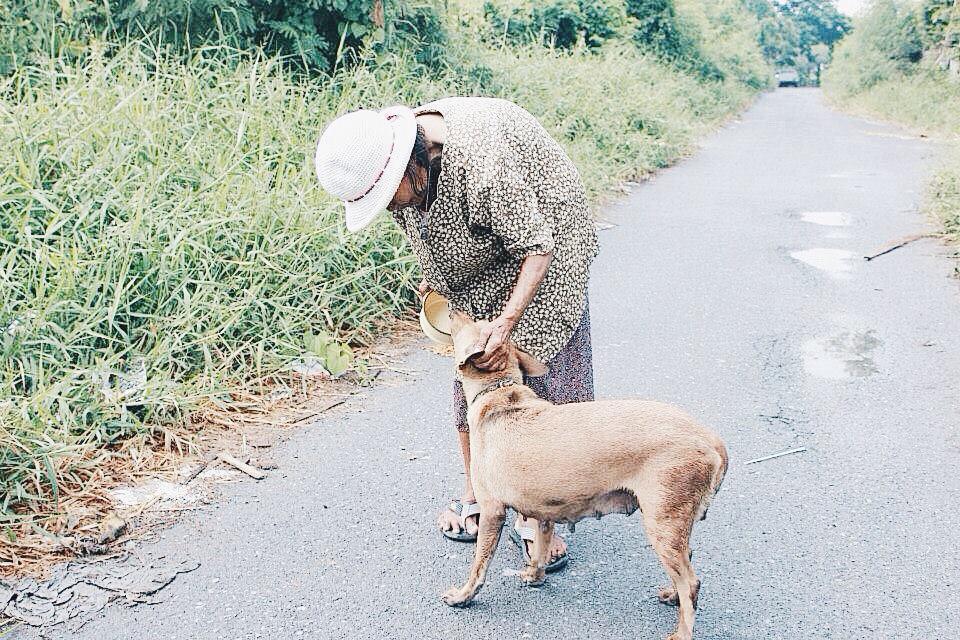 ยายชะอ้อน อายุ76 ปี เดินเท้าให้อาหารสุนัข 7โมง-2ทุ่ม ทำมา10ปีแล้ว ขาดข้าวสารและอาหารเม็ด #ทวิตดีคนรีน้อย #บอกบุญต่อ http://t.co/OJDoPHC0mJ