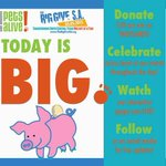 DONATE NOW TO MAKE SA NO KILL! http://t.co/y4eXeSt0CU #BGSA2015 #GiveLocal15 @TheBigGiveSA http://t.co/ySHsOgoCc8