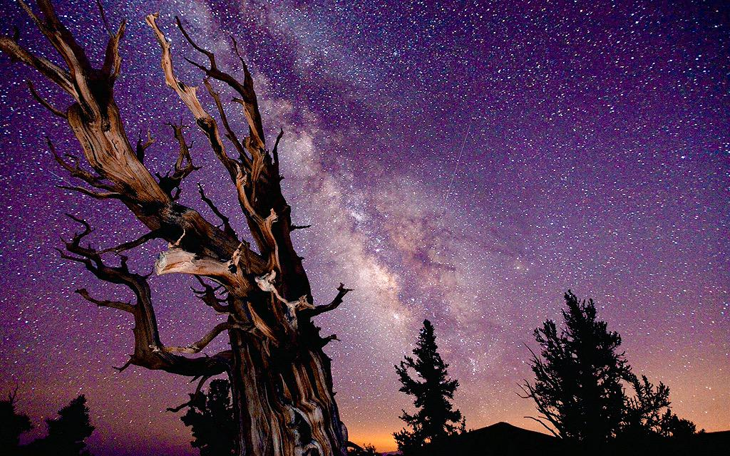 Звездное небо конкурс