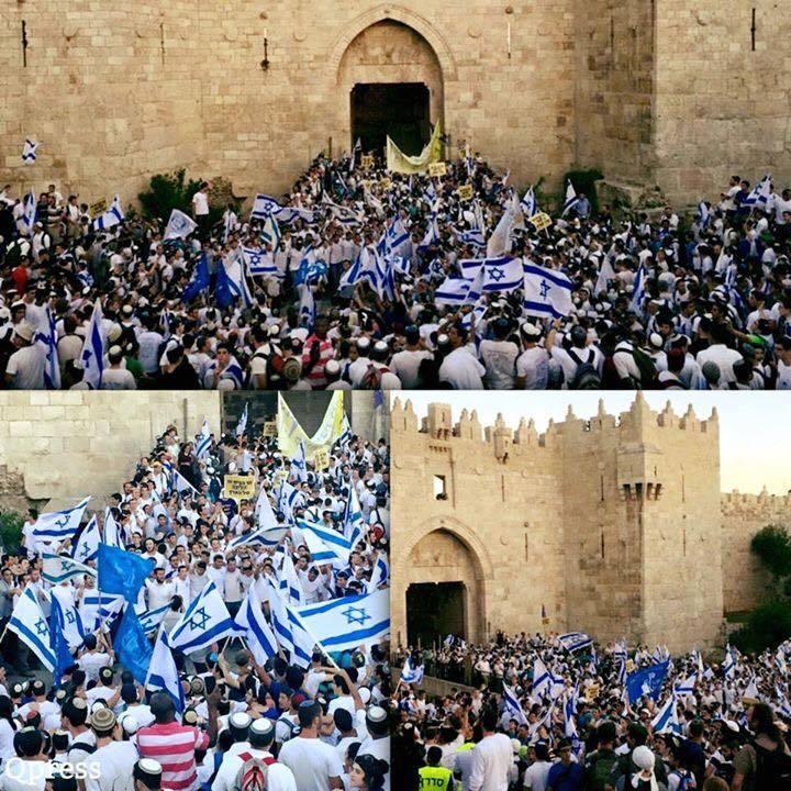 القدس اليوم. بينما طوائفكم تحرق بعضها وبينما تدمرون عواصمكم بأيديكم ياعرب يرقص العدو في القدس. استمِروا في الانقراض http://t.co/CNDtmTyZLr