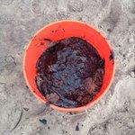 Refugio Spill Rekindles Debate About Oil Industry Risks. Keith Carls explains: http://t.co/KUgiY4dBgI http://t.co/RvVackSPq4