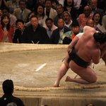 <千秋楽の様子>幕内取組。日馬富士 寄り倒し 白鵬。白鵬、日馬富士ともに11勝4敗。12勝3敗、照ノ富士の初優勝が決まった。#sumo http://t.co/0aJDKwKXe3