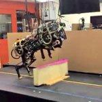 MIT's jumping robot cheetah will keep you awake at night http://t.co/PL1Jb4MnS0