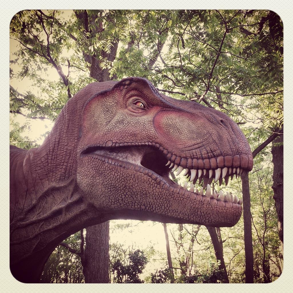 Tyrannosaurus in the wild! @MilwaukeeCoZoo http://t.co/9QyaC0ddiR