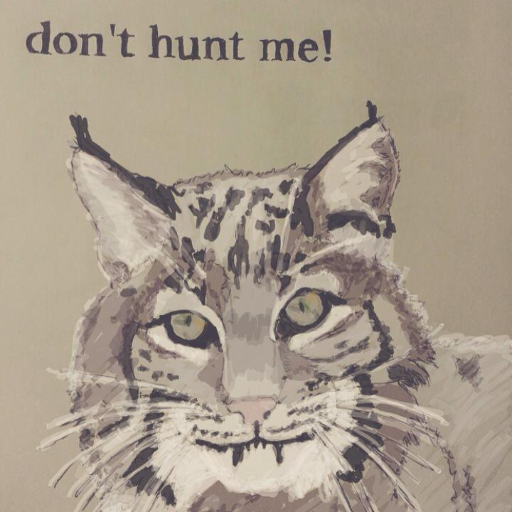 Hey friends! IL is trying to allow bobcat hunting (for fur and trophies