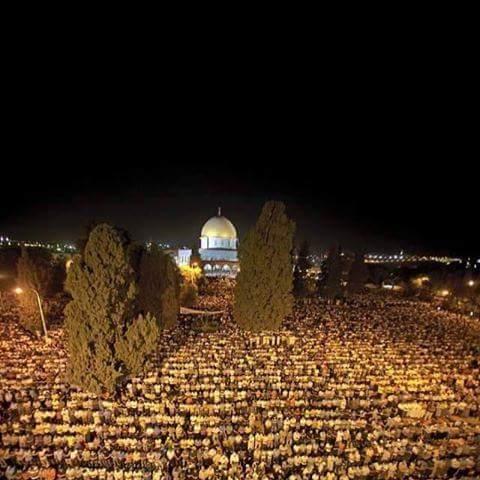 صلاة التراويح في المسجد الاقصى http://t.co/HP8sIlTAuv