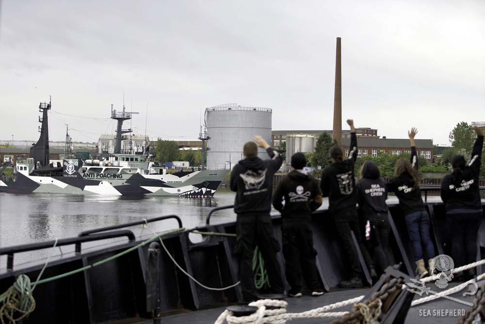 RT @seashepherd: #BREAKING: Sam Simon Departs 4 #OpGrindini Faroe Islands!#SeaShepherd http://t.co/PmMz5MyPMm … http://t.co/A9Ybo0Qi9D http…
