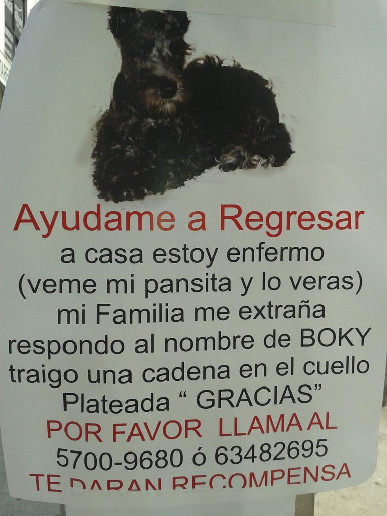 @fellpudito @yaz_animalista @PrrosPerdidosMX @_PatriciaAnaya  volante pegado por metro chabacano cd.de Mex. http://t.co/owQykE7NmH