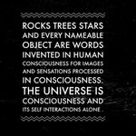 The universe is consciousness