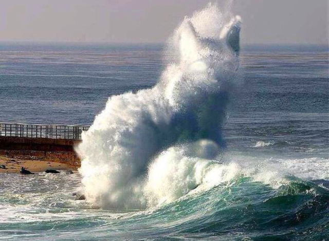 Somebody tell Poseidon his cat got out again. http://t.co/2MDj1C6Crp