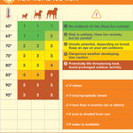 @BMonahanWSB @wsbtv woof, the dog days of summer have arrived, Brian! Will you share this chart to help protect pets? http://t.co/lWKCAEjugm