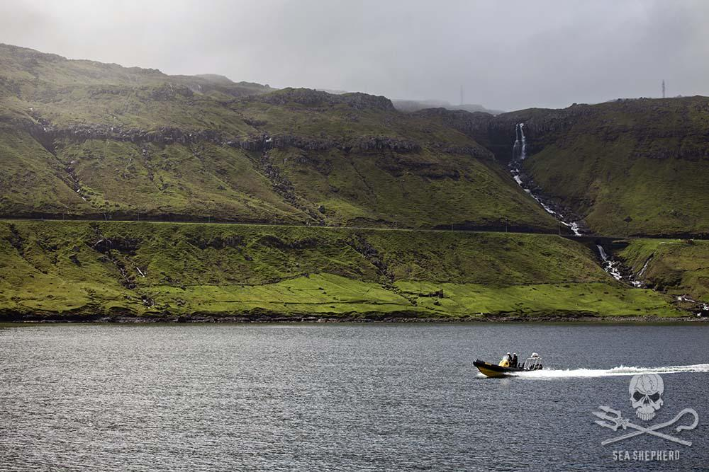 The bloody slaughter of the grind is a stark contrast to the natural beauty of the Faroe Islands. http://t.co/k8ugGNT3e1