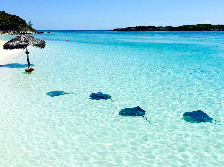 10 gorgeous photos of life in the Bahamas 🌴