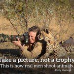 This is how real men shoot animals: take a picture, not a trophy #CecilTheLion #RIPCecil http://t.co/wJwvpp9xUZ