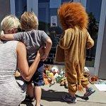 Americano que matou leão no Zimbábue é alvo de ameaças e protestos http://t.co/M1jiZZn71b http://t.co/2hWarnYgdO