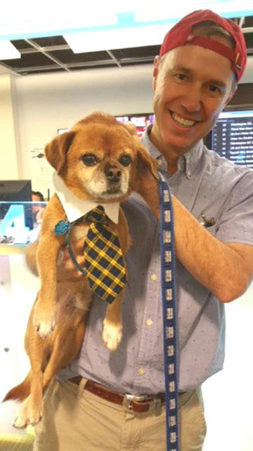 Today's the day! Help us #ClearTheShelters You won't regret it. My rescue suited up @nbcwashington http://t.co/ZKITMvlr71