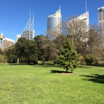 Started day @RBGSydney and ended day @CentParklands ... #beautiful #Sydney http://t.co/t1UHdl3eWS