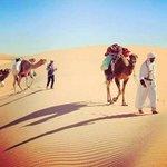 #اكتشف_الجزاير Aℓgєяιє بلد الفصول الاربعة في يوم وحد ♥ http://t.co/7W7UgR1f0G