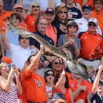 Its game week!! RT if youre ready for Saturday! #WarEagle http://t.co/5yxl9ynJNO