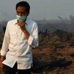 Selain mengecek posko kesehatan, Presiden @jokowi juga melihat pembasahan ulang lahan gambut. http://t.co/78BgFoT8pd http://t.co/2bMsYKX6dl