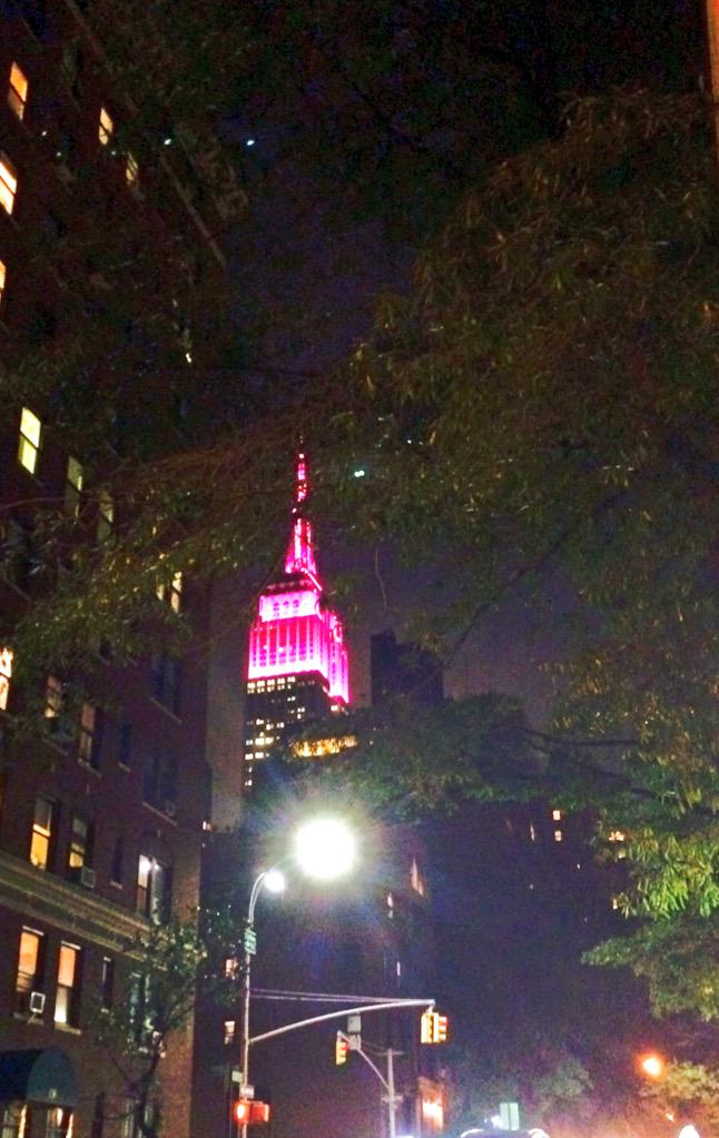 Pink and proud, shouting loud for girls rights everywhere! @EmpireStateBldg glowing for #DayoftheGirl #BeBold4Girls http://t.co/vWOlnm4uL6