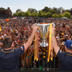 IN PICTURES: @HawthornFC fans celebrate #AFLGF premiership three-peat. http://t.co/iyM9WMSBjJ #9News http://t.co/crlb3xnqcw