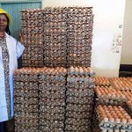 Egg imports from Uganda hatch big losses for farmers http://t.co/UVBOnf17bG http://t.co/0nXx8Vg1ZC