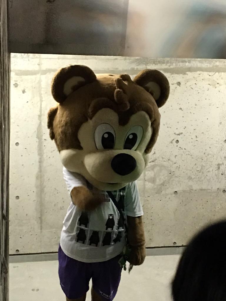 熊本ゴール裏にゆとりグマ現る http://t.co/oCP5mQN607