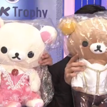 Who dressed these bears in the @ShibSibs costumes? Love the Japanese passion for figure skating. https://t.co/swL0q3Eh7d