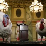 Honest and Abe vie for Obamas Thanksgiving turkey pardon: https://t.co/JFhz9l9ln8 https://t.co/PGTNCpwFpE