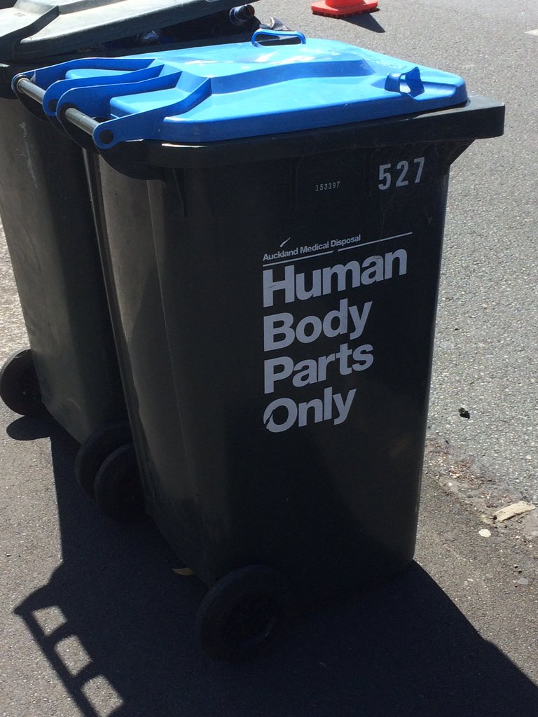Best wheelie bin in Auckland. https://t.co/iiWpuyb4z5