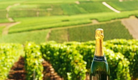 10 Best Champagne Wines to Buy Now + 5 Surprising Facts about Champagne  https://t.co/5crmfOujEf #wine https://t.co/vtJwVUavjB