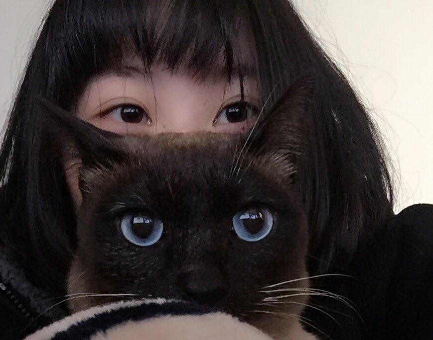 日常晒猫【 https://t.co/GZF5WFRkXg