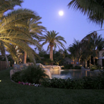 Create an oasis around your pool https://t.co/Vv9ZdPe5s0 #landscapedesign #InlandEmpire #VictorValley #HighDesert https://t.co/xeLkzF0BBW