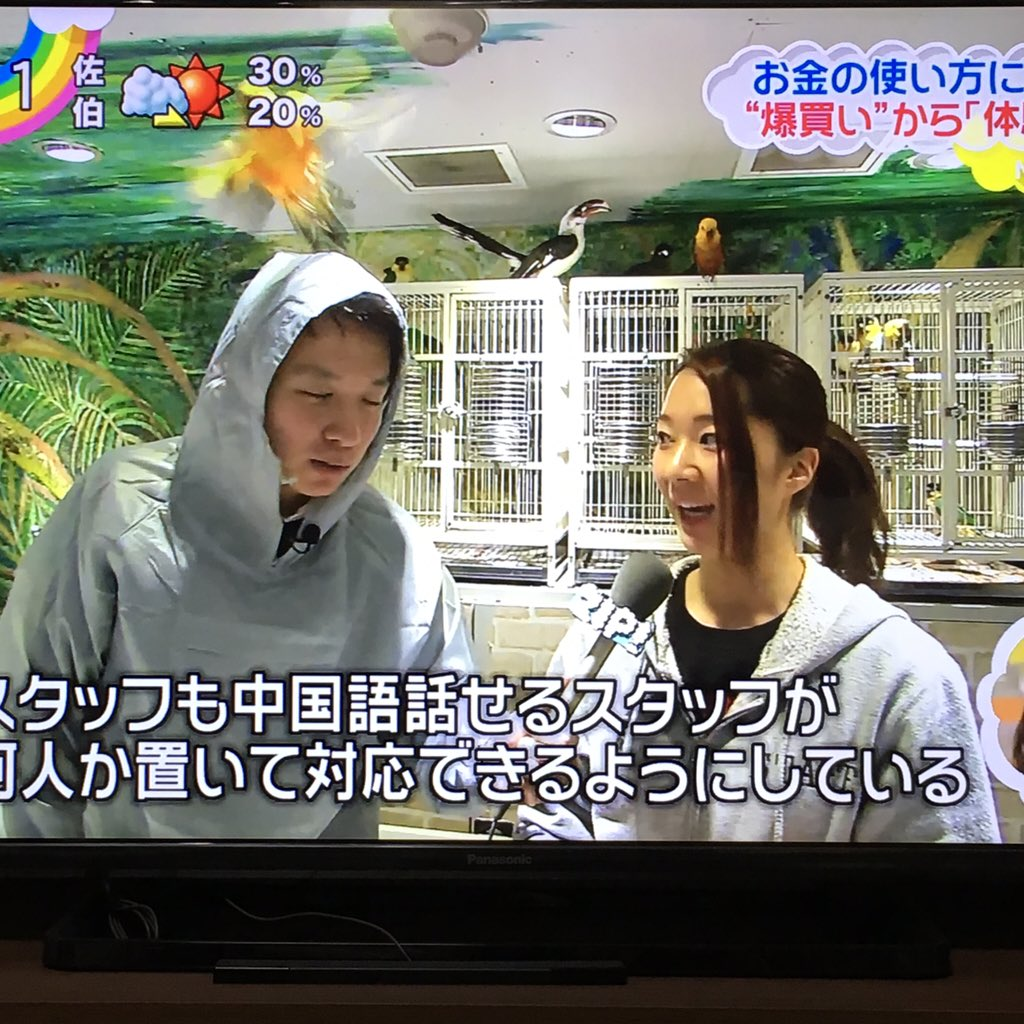 日本テレビ男性アナウンサーをゲイが語るわ! Part3©2ch.netYouTube動画>6本 ->画像>1246枚