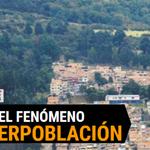 El precio ambiental que pagaría Bogotá por intervenir la reserva Thomas van der Hammen https://t.co/9uIR33sKk6 https://t.co/wgUbkiXNqA