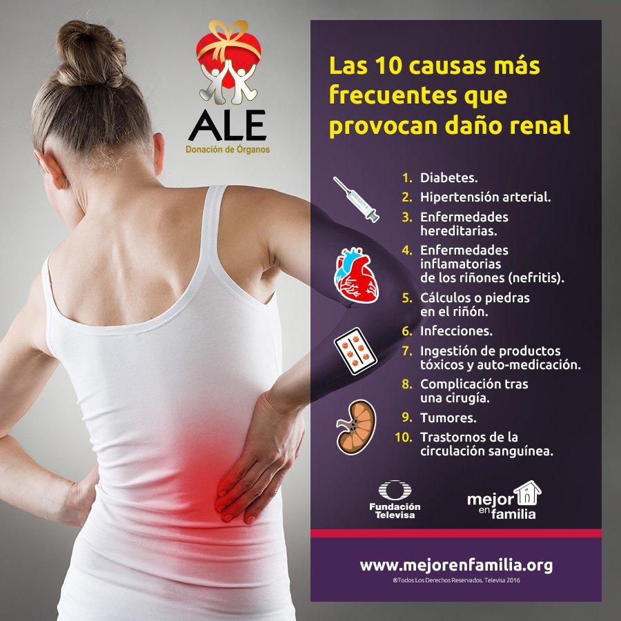 10 causas más frecuentes que provocan daño renal @AleAsociacion https://t.co/cldJa14poo https://t.co/RQLk78LBpA