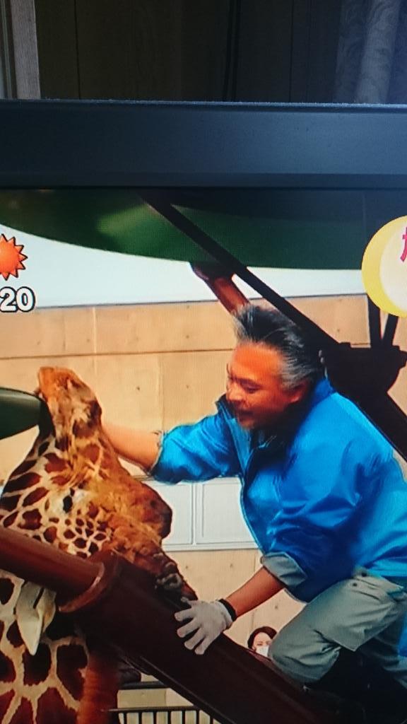 旭山動物園のゲンキ木のオブジェに首を挟む https://t.co/pESDuCyStW