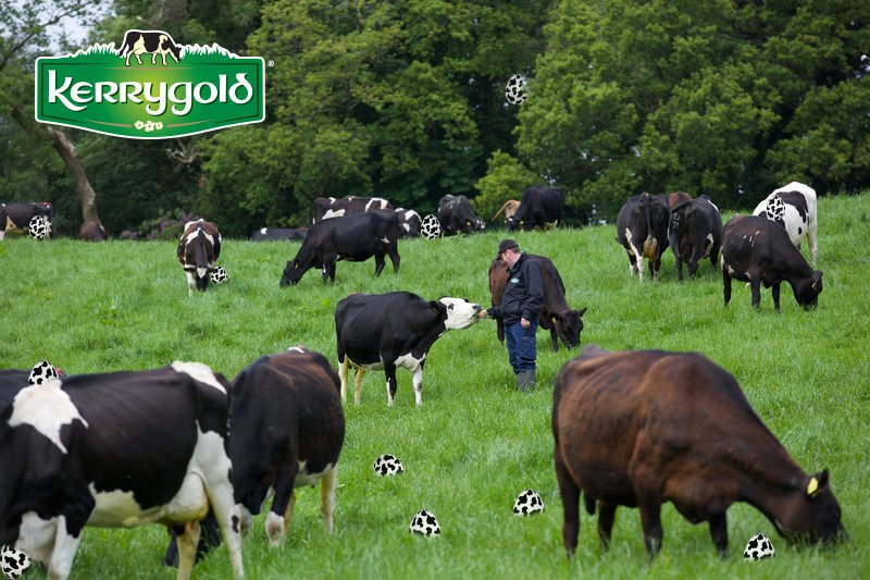 How many cow eggs can you spot? Comment before 3/24 @ 12PM CST. Random winner selected. *#KerrygoldEaster to enter* https://t.co/CoBKRdzJvh