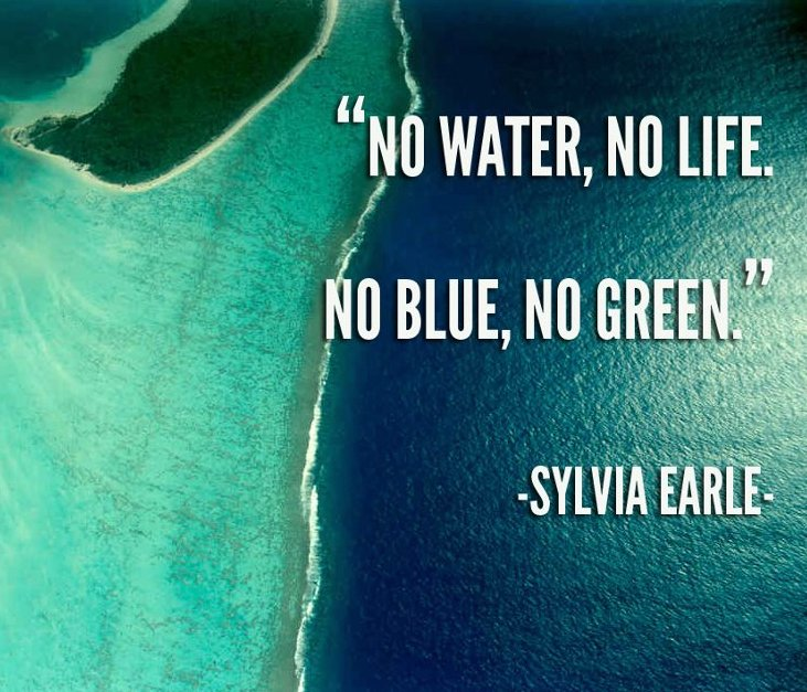 The #Ocean is the Life Support System of our Planet: No Blue, No Green! Retweet! https://t.co/j3V3i3qPjf