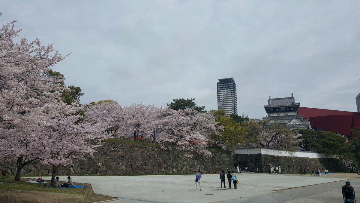 ミリ福岡現地勢は小倉城絶対行くんだぞ。桜満開! https://t.co/8Rxt4AuXTj