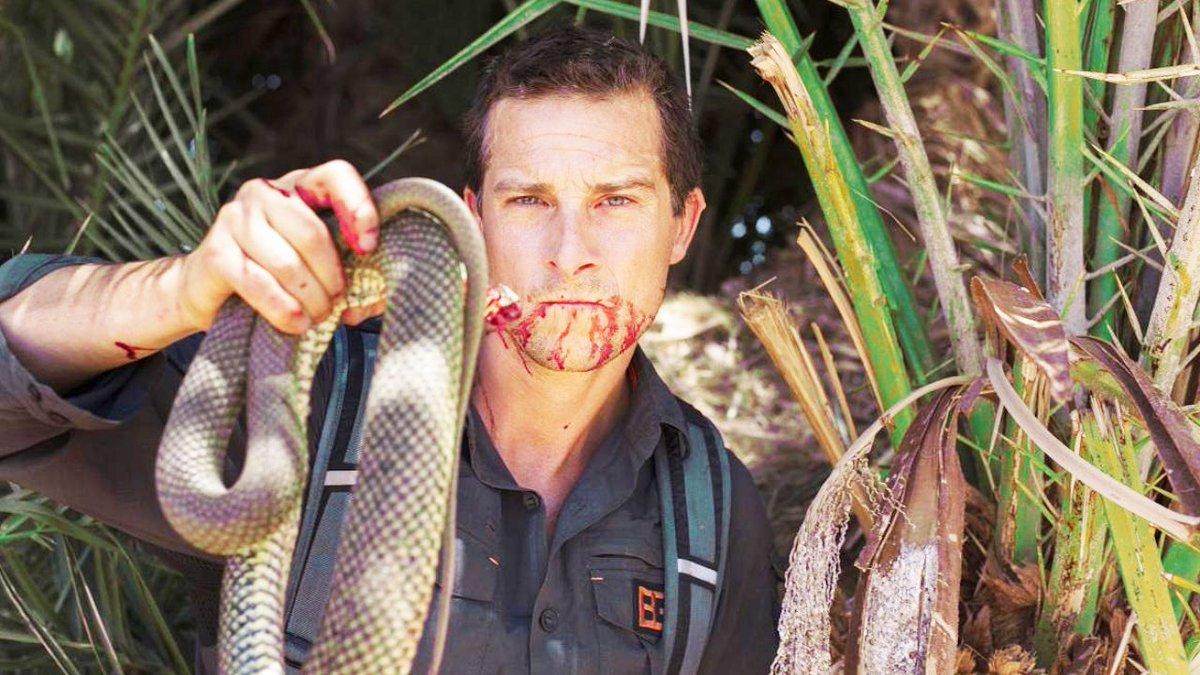 Drinking blood straight out of a Yak's corpse is only #10! Top 10 Insane #BearGrylls Moments https://t.co/SvIsKNnSRk https://t.co/NtP1CMuZAf