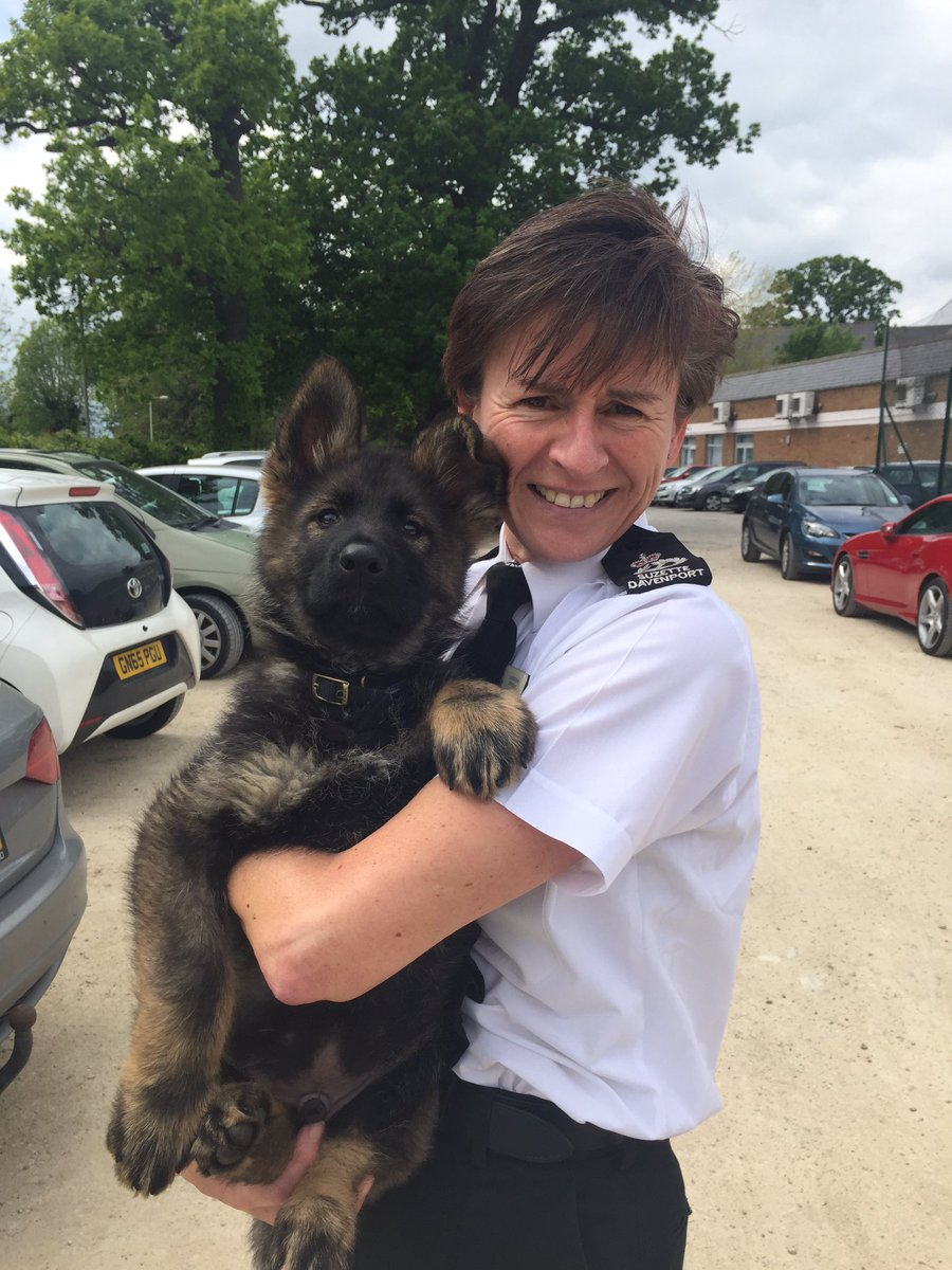 Got the opportunity to meet Jango @Glos_Police Leaders' Day. Think he will make a great leader! https://t.co/VT0HRyQ0aK