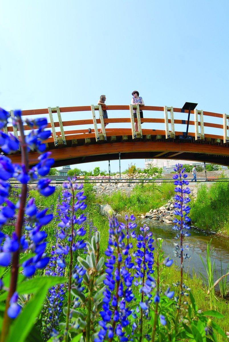 #CityofPG green thumbs: David Douglas Botanical Garden Society's plant sale is Sunday, May 22 at #UNBC. 10 am - 1 pm https://t.co/h8BGSCb4aD