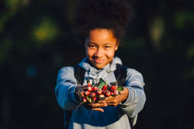 #Farmtoschool helps students feel invested in their #localfood systems & empowered to choose healthy food https://t.co/1ysKC4Xf5H